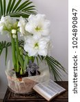 Small photo of White amaryllis flowers and palm branches with pewter crosses and Bible.