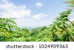 beautiful light clouds warm... | Shutterstock . vector #1024909363