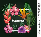 tropical and exotics flowers... | Shutterstock .eps vector #1025015983