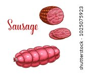 sausage salami or pepperoni... | Shutterstock .eps vector #1025075923