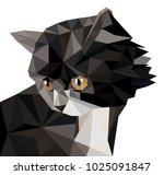 vector illustration of low poly ... | Shutterstock .eps vector #1025091847