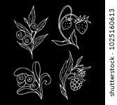 set of berries vector...   Shutterstock .eps vector #1025160613
