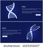 dna collection of web pages ... | Shutterstock .eps vector #1025242657