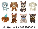 dogs and puppies collection ... | Shutterstock .eps vector #1025243683