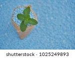 mint leaves in gunny sack on... | Shutterstock . vector #1025249893