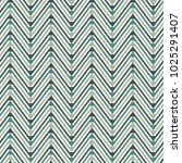 chevron diagonal stripes... | Shutterstock .eps vector #1025291407