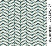 chevron diagonal stripes... | Shutterstock .eps vector #1025291407