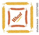 color vegetable square frame.... | Shutterstock .eps vector #1025297683