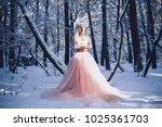 a girl is an elf  stands in a...   Shutterstock . vector #1025361703