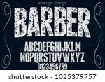 vintage font typeface... | Shutterstock .eps vector #1025379757