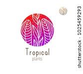 tropical plant logo. vector... | Shutterstock .eps vector #1025459293