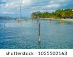cancun  mexico   january 10 ... | Shutterstock . vector #1025502163