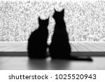 two black cats looking outside... | Shutterstock . vector #1025520943