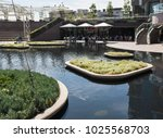 los angeles  california  ... | Shutterstock . vector #1025568703