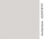 seamless pattern from diagonal...   Shutterstock .eps vector #1025578747