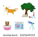 walking with a dog in the park  ... | Shutterstock .eps vector #1025649253