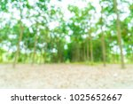 abstract blur walkway with tree ... | Shutterstock . vector #1025652667