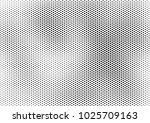 grunge halftone background ... | Shutterstock .eps vector #1025709163
