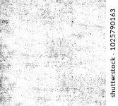 grunge black and white.... | Shutterstock . vector #1025790163