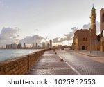 tel aviv  israel   march 2 ... | Shutterstock . vector #1025952553