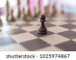 playing chess game   Shutterstock . vector #1025974867