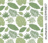 vector tropical palm leaves ... | Shutterstock .eps vector #1025993857