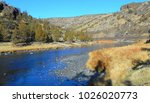Small photo of Golden Goody - View in Crooked River Canyon - south of Prineville, OR