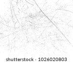 grunge background.texture... | Shutterstock .eps vector #1026020803