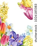 bouquet of spring flowers  a... | Shutterstock . vector #1026185383