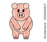 grated adorable pig farm animal ... | Shutterstock .eps vector #1026263617