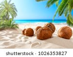 coconuts on the beach with a... | Shutterstock . vector #1026353827