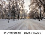 winter park with trees covered...   Shutterstock . vector #1026746293
