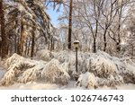 winter park with trees covered... | Shutterstock . vector #1026746743
