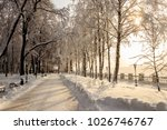 winter park with trees covered... | Shutterstock . vector #1026746767