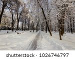 winter park with trees covered... | Shutterstock . vector #1026746797
