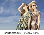 two beautiful brunette and... | Shutterstock . vector #102677543