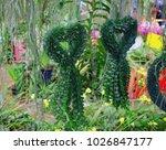 hanging flower thailand   Shutterstock . vector #1026847177