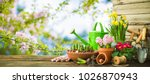 Stock photo gardening tools and spring flowers on the terrace in the garden 1026870943