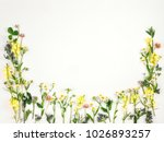 colorful bright frame made of... | Shutterstock . vector #1026893257