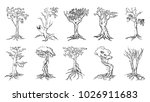 tree silhouettes on white... | Shutterstock .eps vector #1026911683