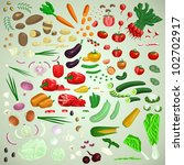 vector vegetables set  raw... | Shutterstock .eps vector #102702917