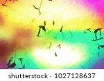 graphic design digital... | Shutterstock . vector #1027128637