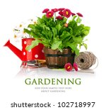 spring flowers with garden... | Shutterstock . vector #102718997