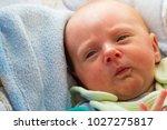 childhood innocence concept....   Shutterstock . vector #1027275817