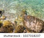 rocks on the beach  rocks in... | Shutterstock . vector #1027318237