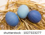 three blue painted easter eggs...   Shutterstock . vector #1027323277