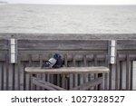 folly beach south carolina ... | Shutterstock . vector #1027328527