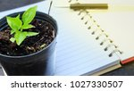 plant growing pot on notepad... | Shutterstock . vector #1027330507