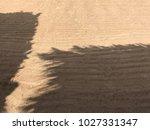 sand beach sea | Shutterstock . vector #1027331347