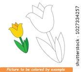 Beautiful Yellow Tulip To Be...